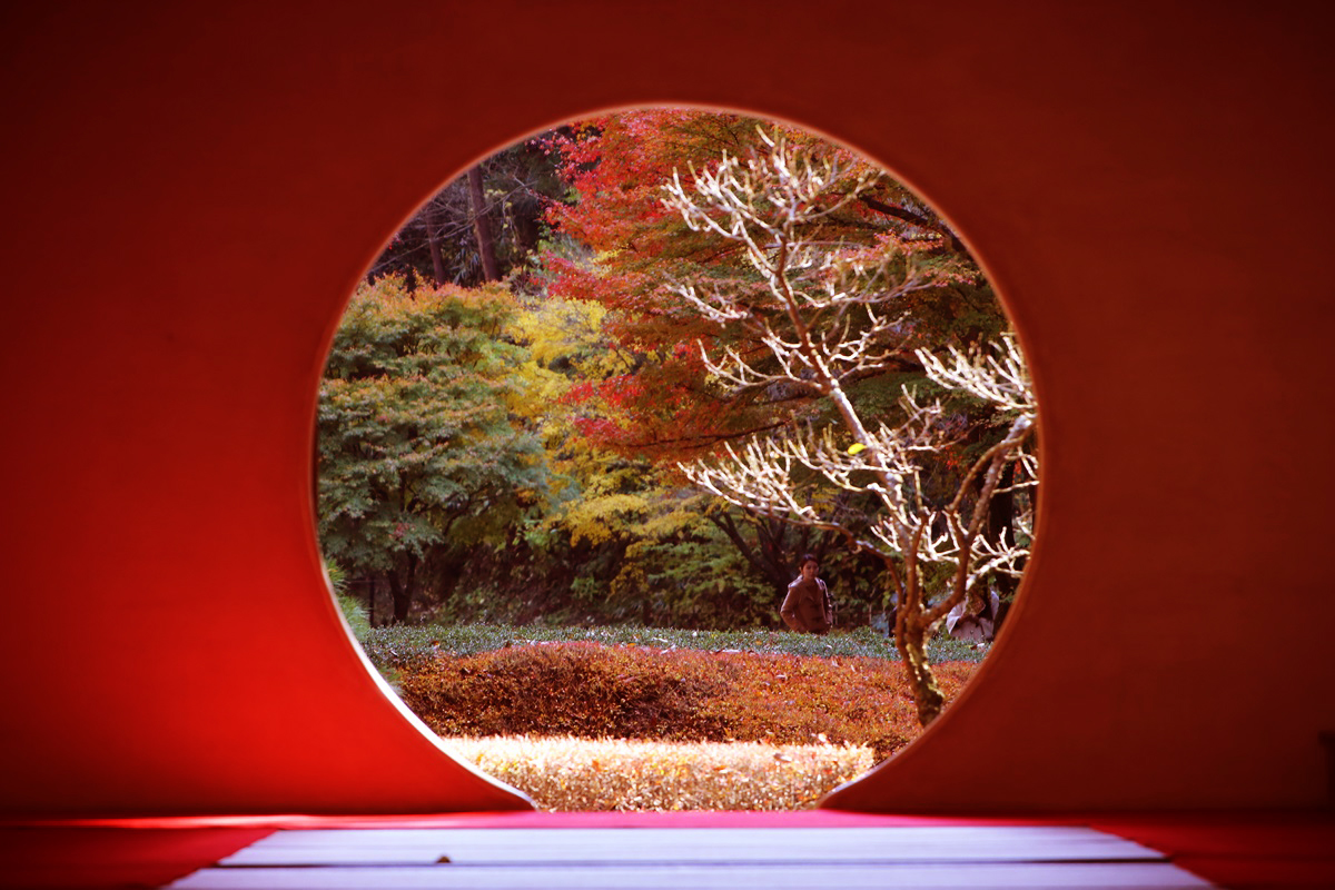 丸窓の北鎌倉 明月院 kitakamakura_meigetuin (16)