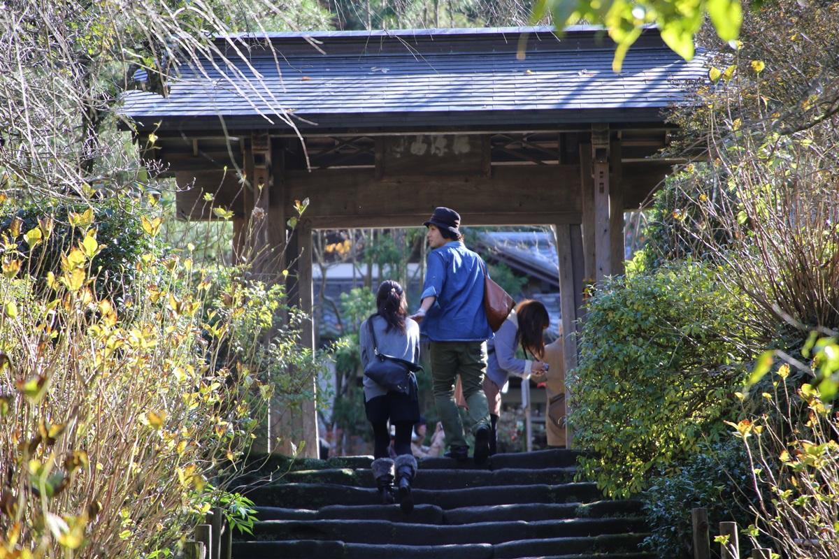 丸窓の北鎌倉 明月院 kitakamakura_meigetuin (5)