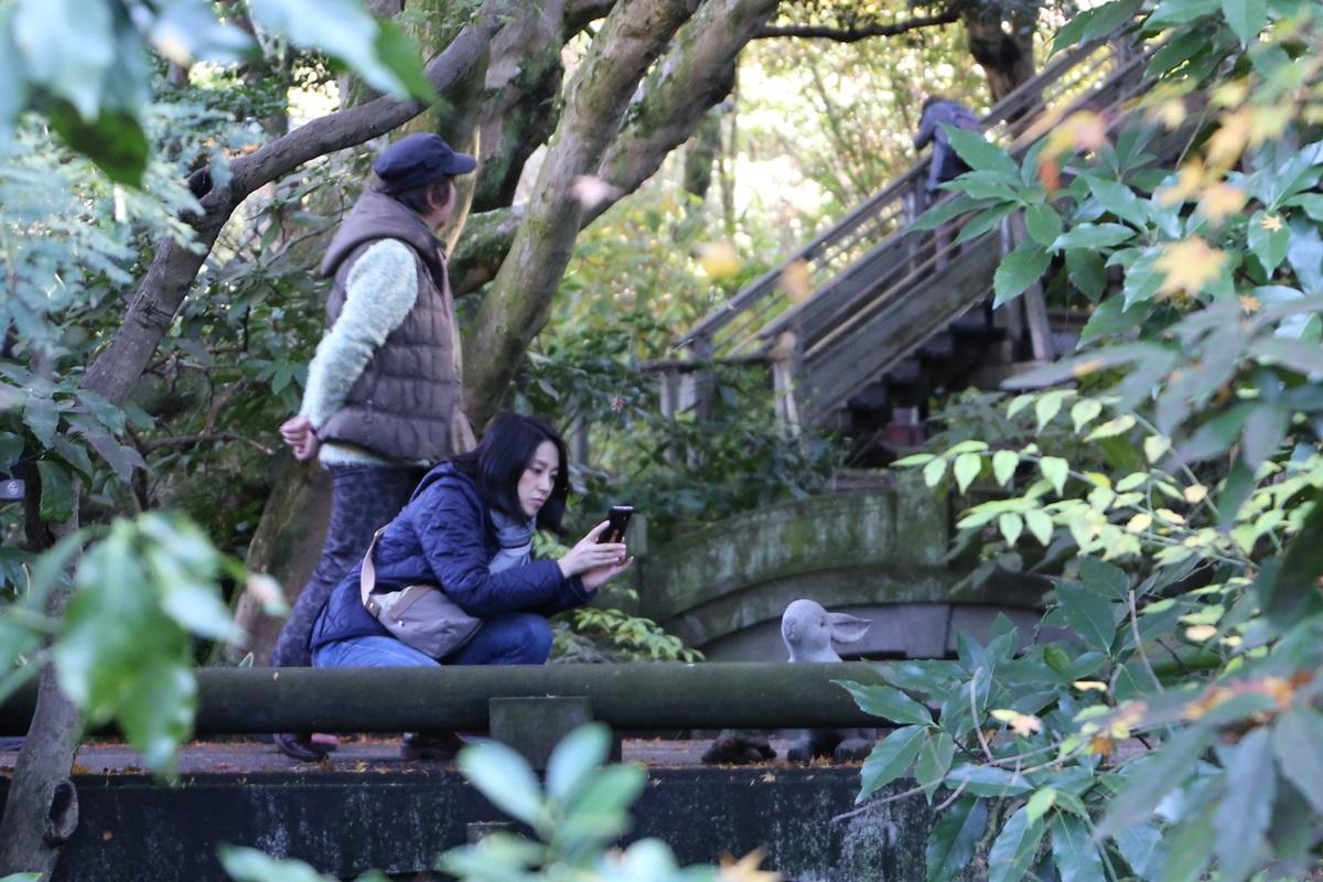 丸窓の北鎌倉 明月院 兎と亀 kitakamakura_meigetuin