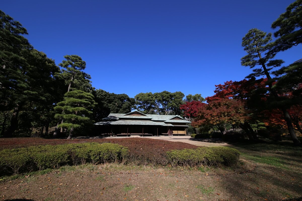 諏訪の茶屋 旧江戸城跡地の紅葉 kokyo_koyo (11)