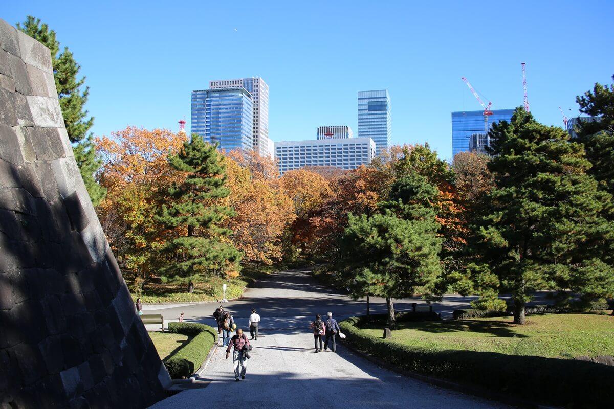 旧江戸城跡地の紅葉と大手町  kokyo_koyo (13)