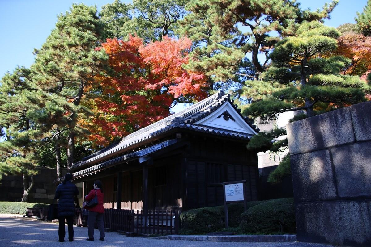 同心番所 旧江戸城跡地の紅葉 kokyo_koyo (15)