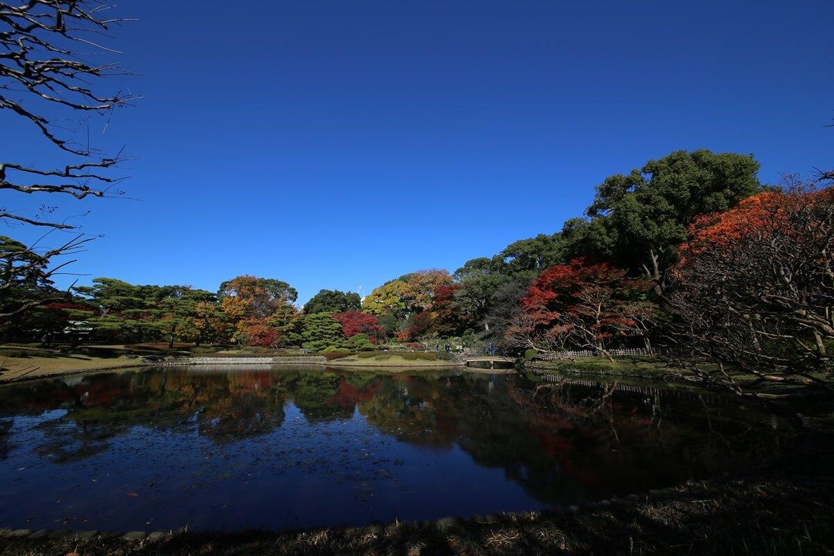 二の丸 旧江戸城跡地の紅葉 kokyo_koyo (24)