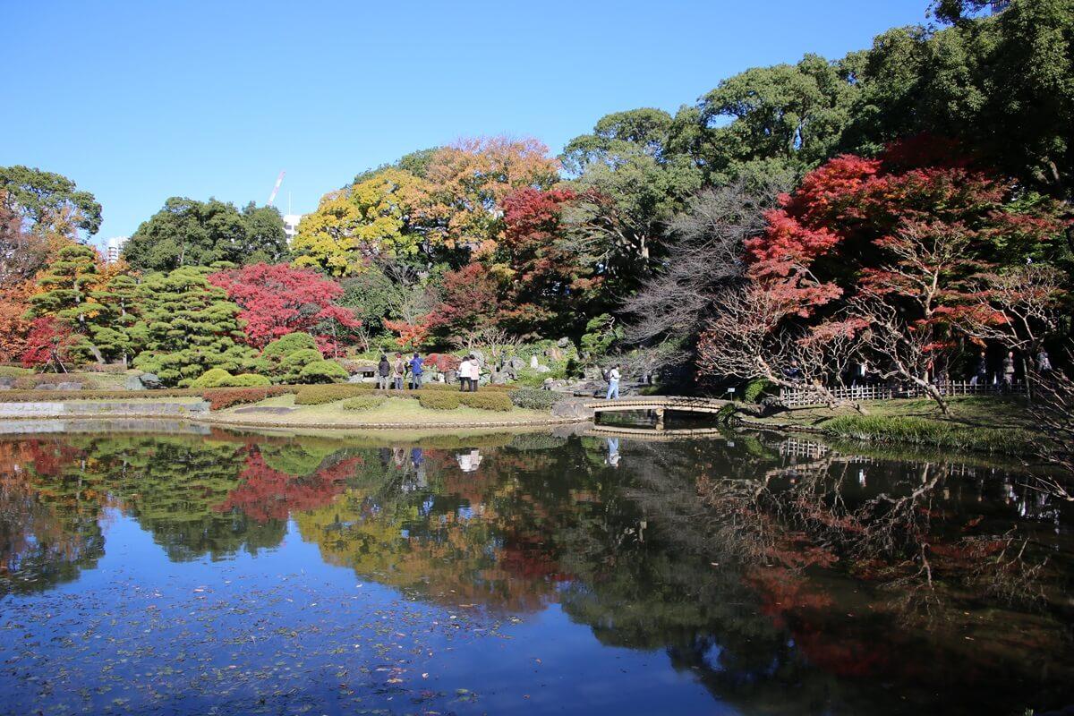 二の丸 菖蒲園 旧江戸城跡地の紅葉 kokyo_koyo (6)