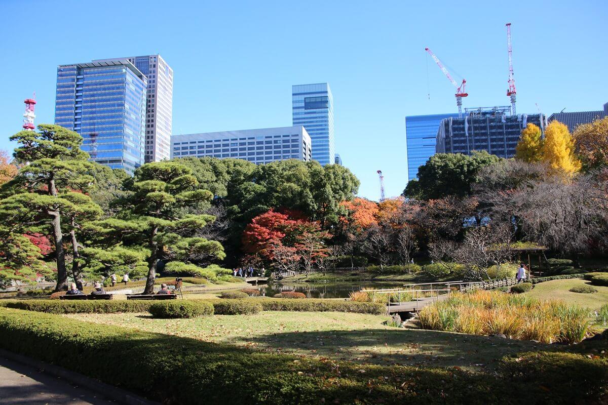 旧江戸城跡地の紅葉と大手町 kokyo_koyo (9)