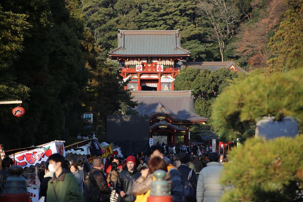 鎌倉 鶴岡八幡宮 kamakura tsurugaokahachimangu (1)