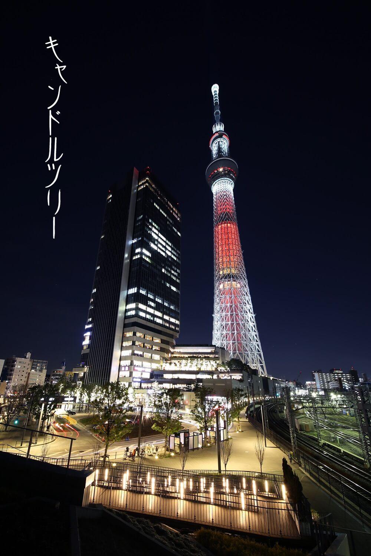 東京スカイツリー キャンドルツリー tokyo_skytree (2)