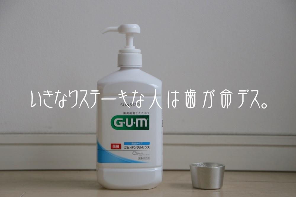 サンスター ガム 液体ハミガキ  能作 ぐい呑 - 月 SUNSTER_GUM (1)