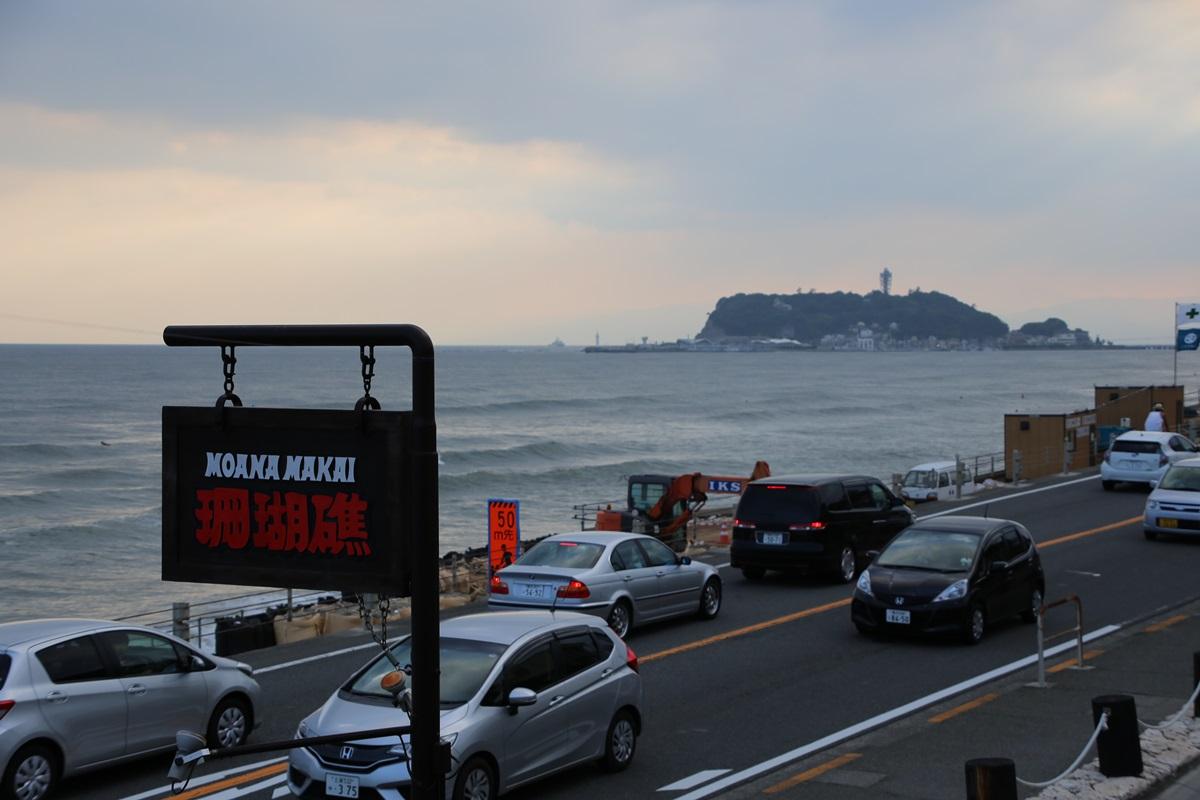 江の島 七里ヶ浜 珊瑚礁 enoshima_sangosho (3)
