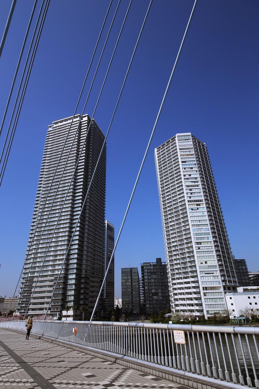 辰巳桜橋から見る東雲キャナルコート tasumisakurabashi (6)