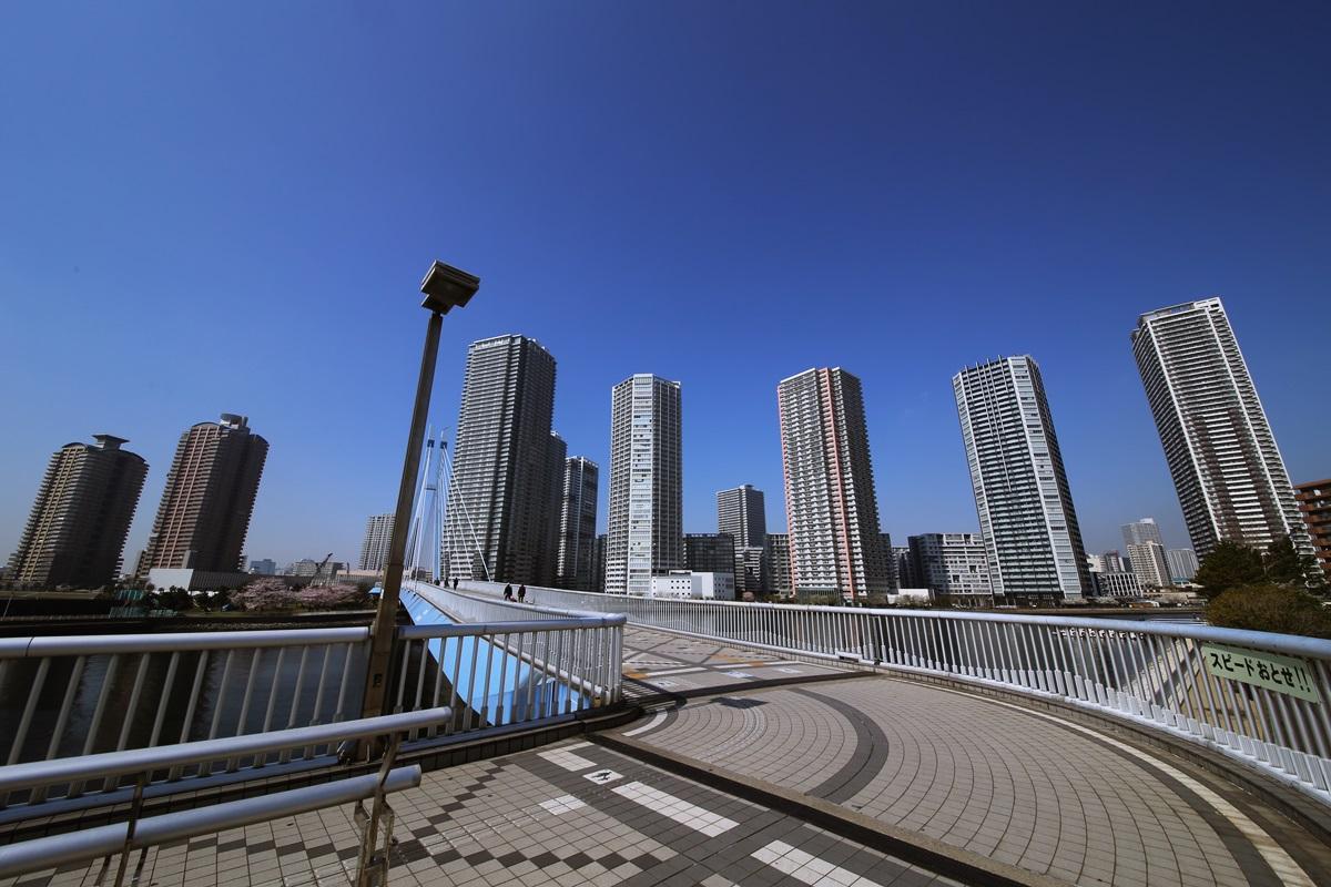 辰巳桜橋から見る東雲キャナルコート tasumisakurabashi (7)