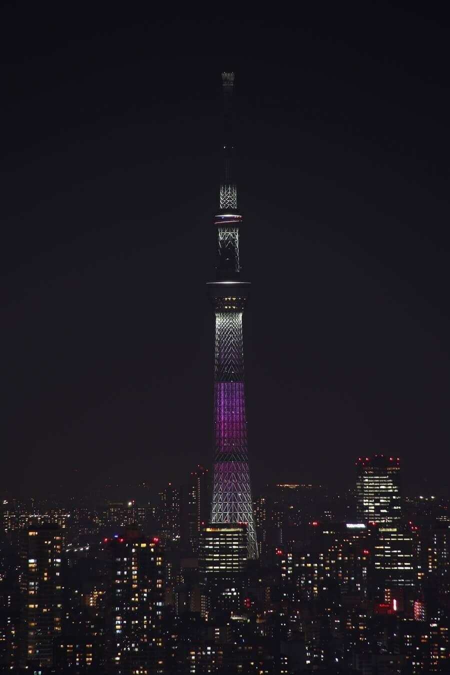 東京スカイツリー 舞 tokyo_skytree_mai (5)