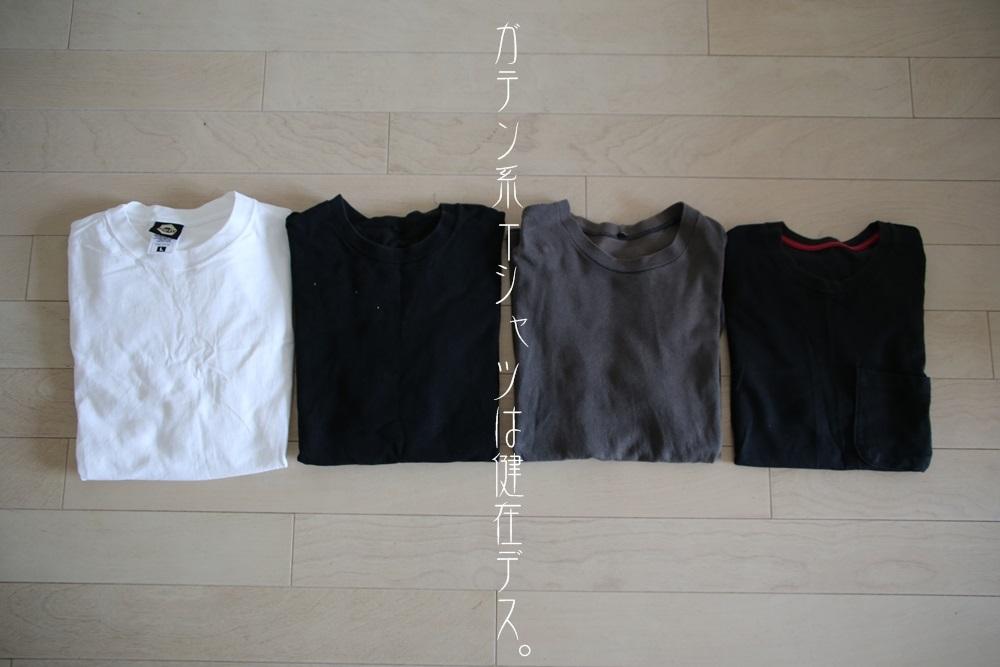 京都イージー社製 nuts ゴールドタグ 6.9oz Tシャツ EASY_NUTS_GOLD (1)