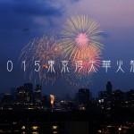 最期の東京湾大華火祭2015 【前篇】