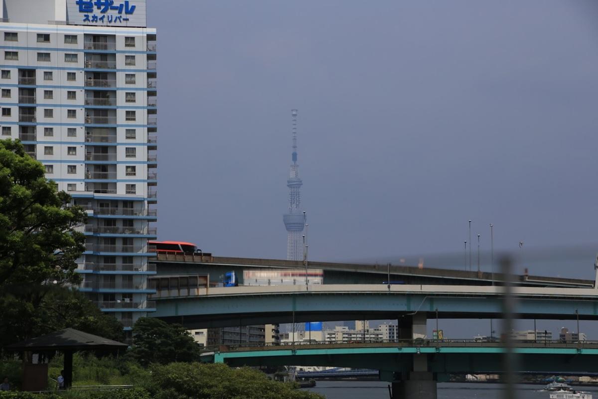 マイル・ポスト・バイク・アンド・カフェのテラス席からの東京スカイツリー Mile Post Bike and Cafe (8)