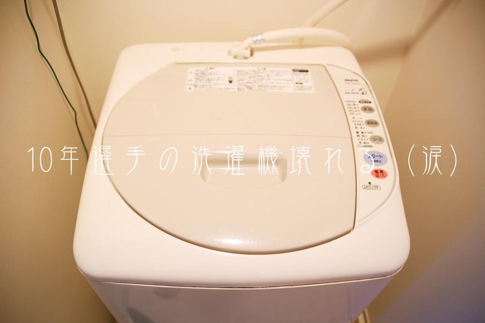 パナソニック三洋 洗濯機 パルセーター SSANYO_ASW-42S6 (6)