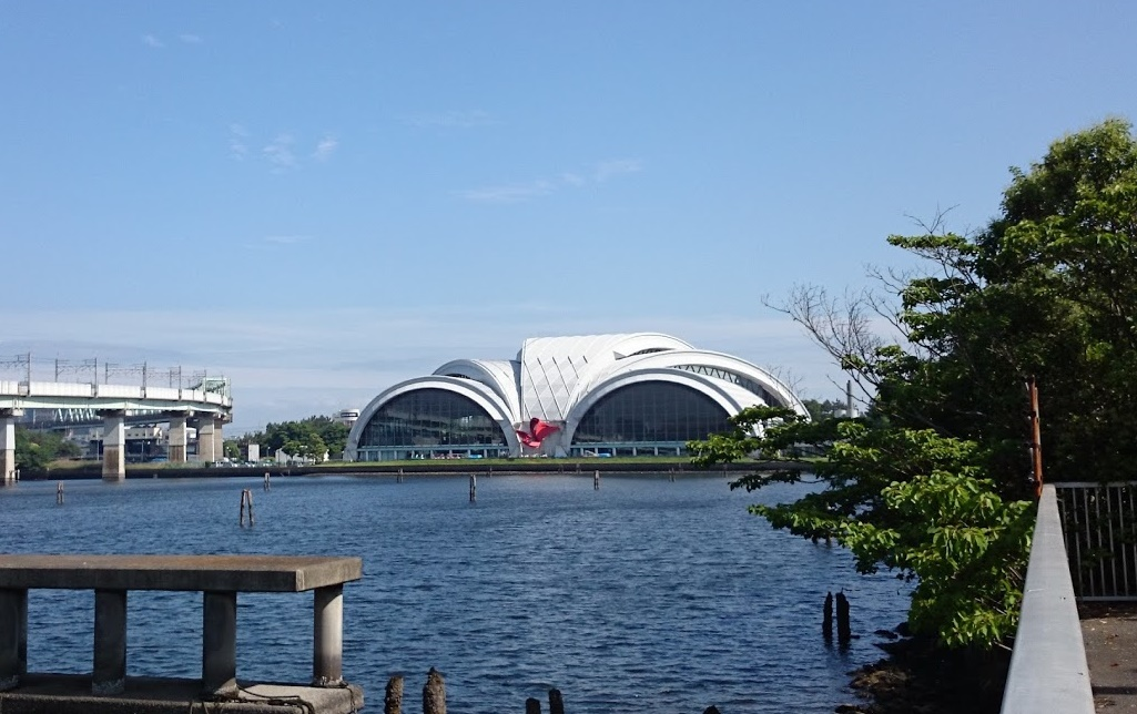 tatsumi_pool 東京辰巳国際水泳場