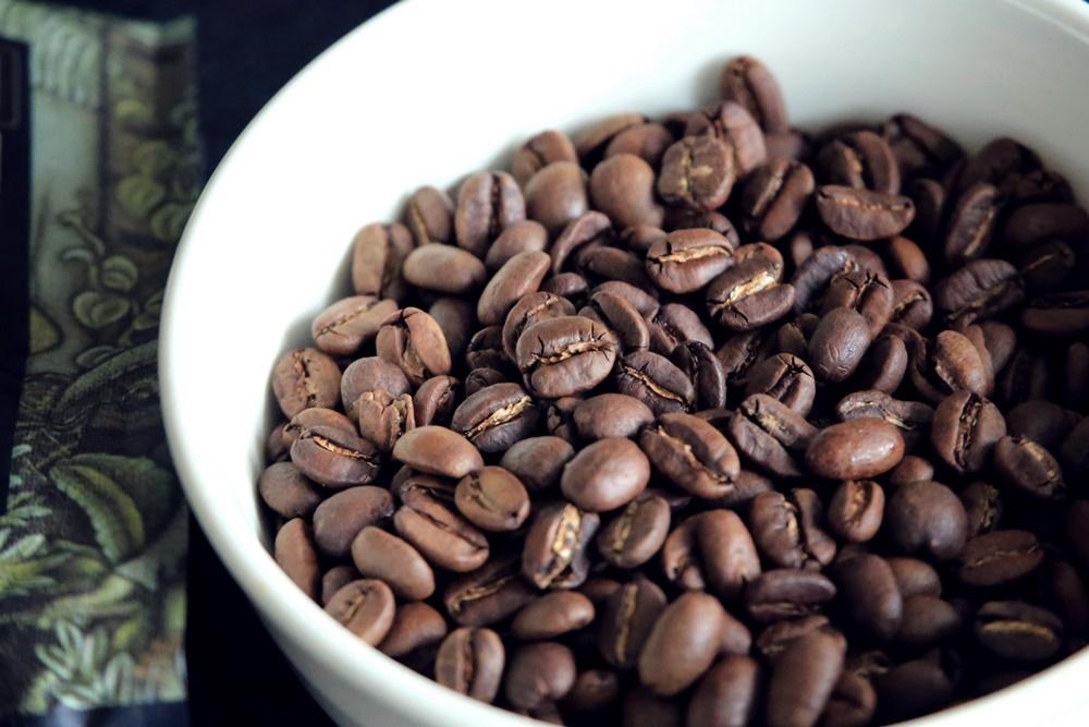 ジャコウネコの糞から採取された未消化のコーヒー豆 ワイルドコピルワク WILD_KOPI_LUWAK (3)