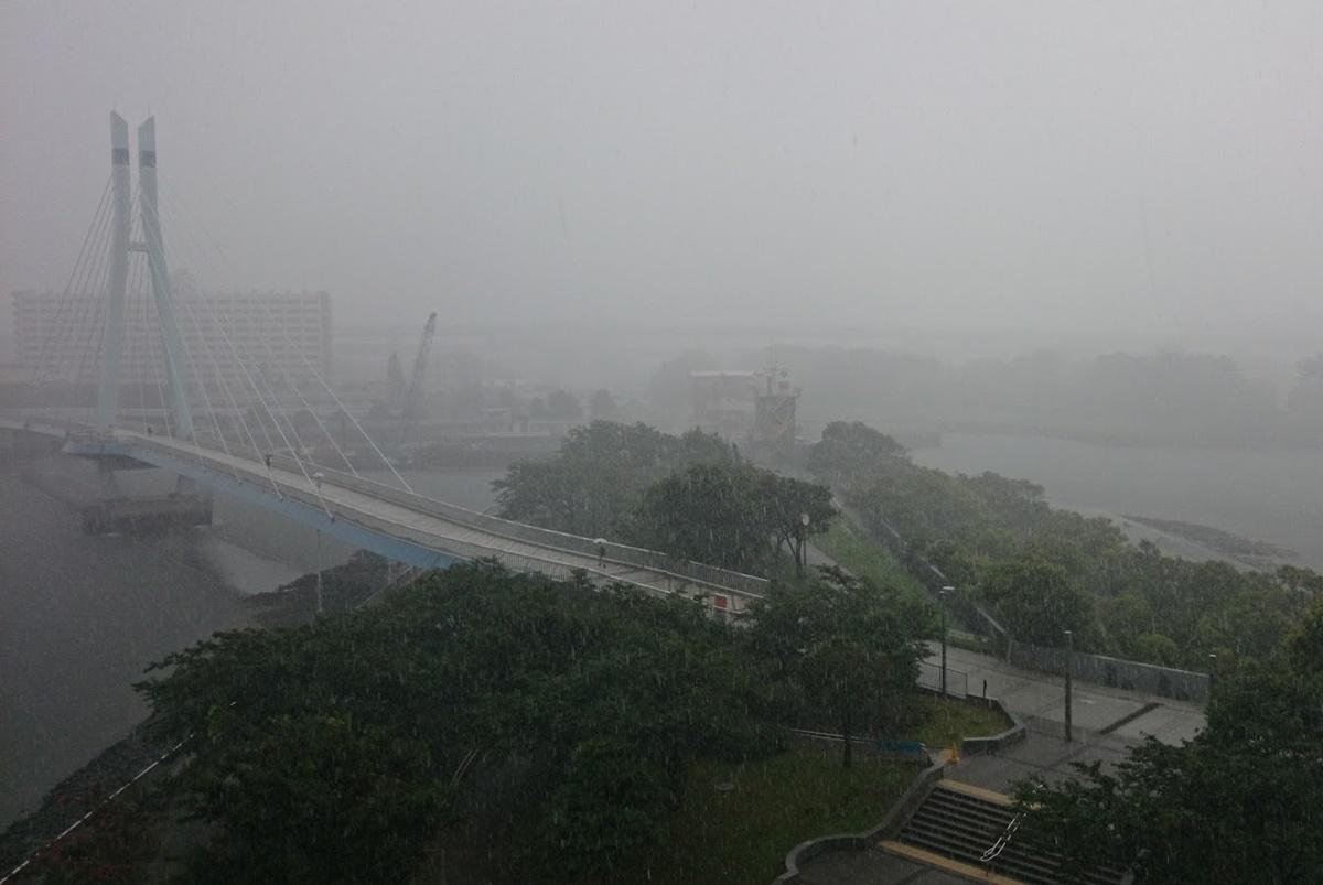 東雲 辰巳運河 ゲリラ豪雨