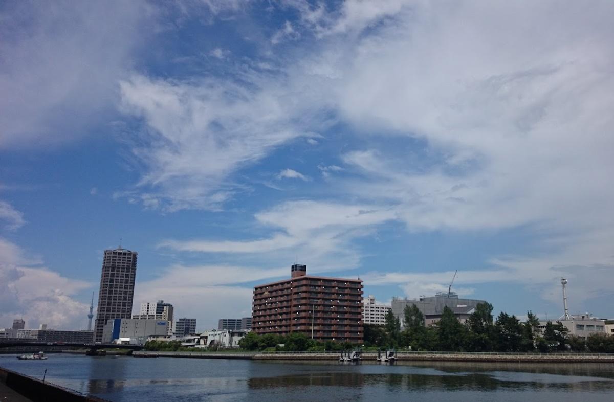 東雲 辰巳運河