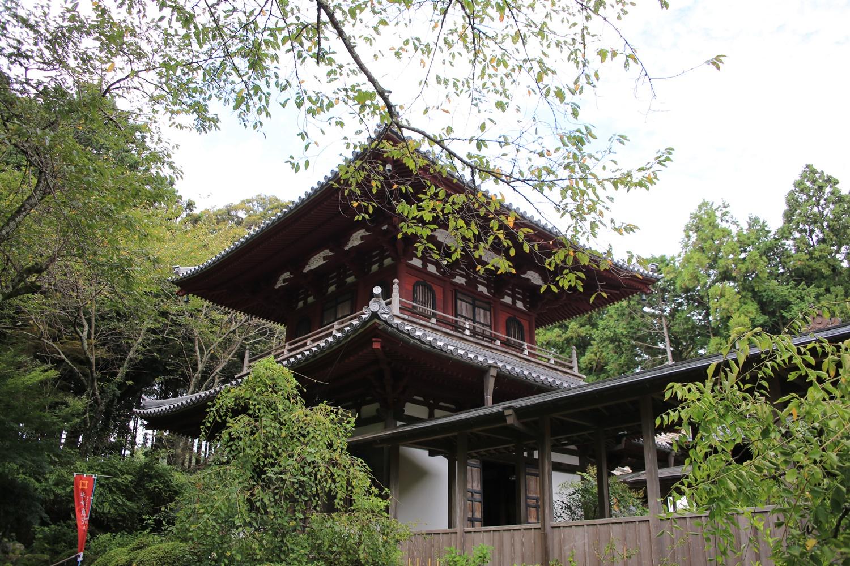開山堂 ryotanji (17) おんな城主直虎所縁の龍潭寺