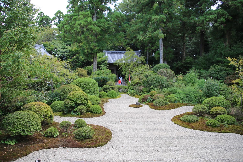 前庭 ryotanji (4) おんな城主直虎所縁の龍潭寺
