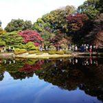 皇居東御苑では紅葉と坂本龍馬らの書状公開中。