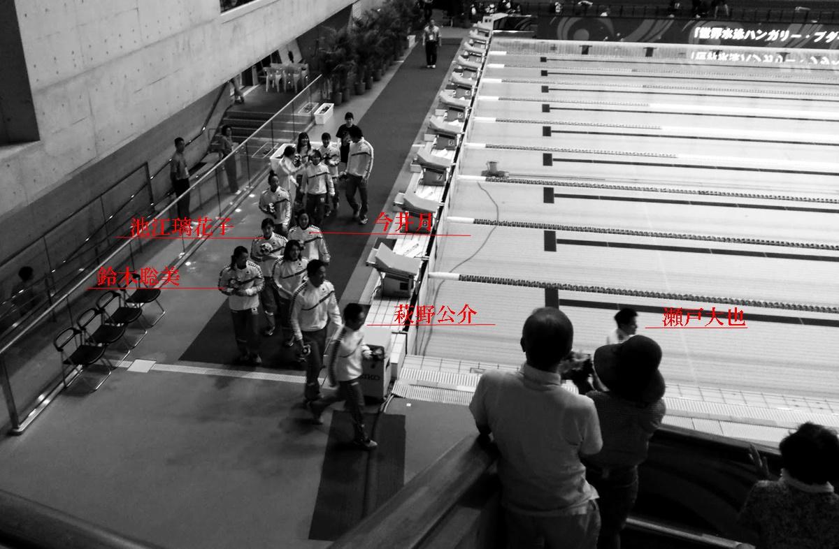 競泳JAPAN OPEN 2017 ジャパンオープン2017 東京辰巳国際水泳場