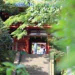 徳川家康公が眠る久能山東照宮。