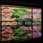 2018 京都の旅 vol.2 瑠璃光院。