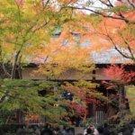 2018 京都の旅 vol.6 常寂光寺。