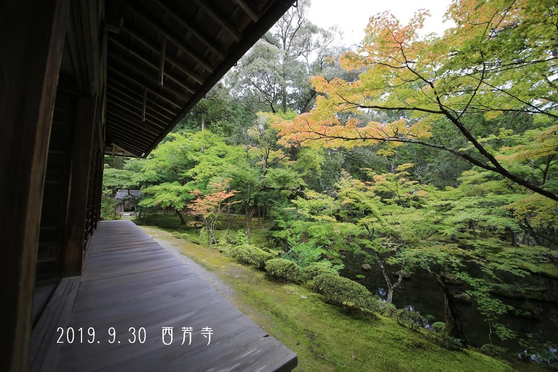 謹賀新年 西芳寺
