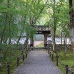 2019 京都の旅 vol.16 地蔵院。