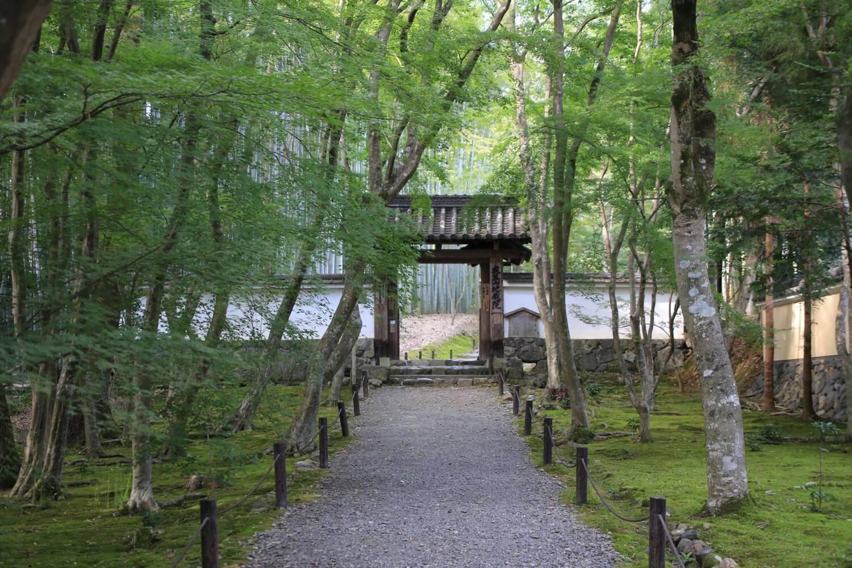 地蔵院 京都市西京区