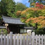 2019 京都の旅 vol.17 西芳寺。