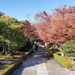 2020 京都の旅 vol.04  相国寺承天閣美術館。