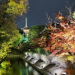2020 京都の旅 vol.14 東寺。