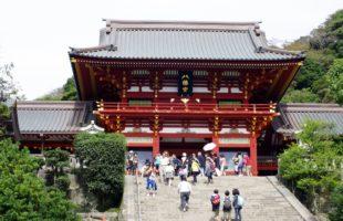 歴史探訪:半沢直樹もびっくりな鎌倉幕府第三代征夷大将軍 源実朝暗殺事件と大銀杏。