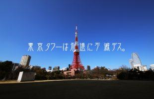 東京タワー最強の鑑賞スポット。