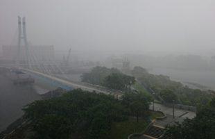 雨天の翌朝、東京の河川や運河が臭うのは何故?